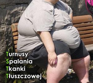 Turnusy spalania tkanki tłuszczowej